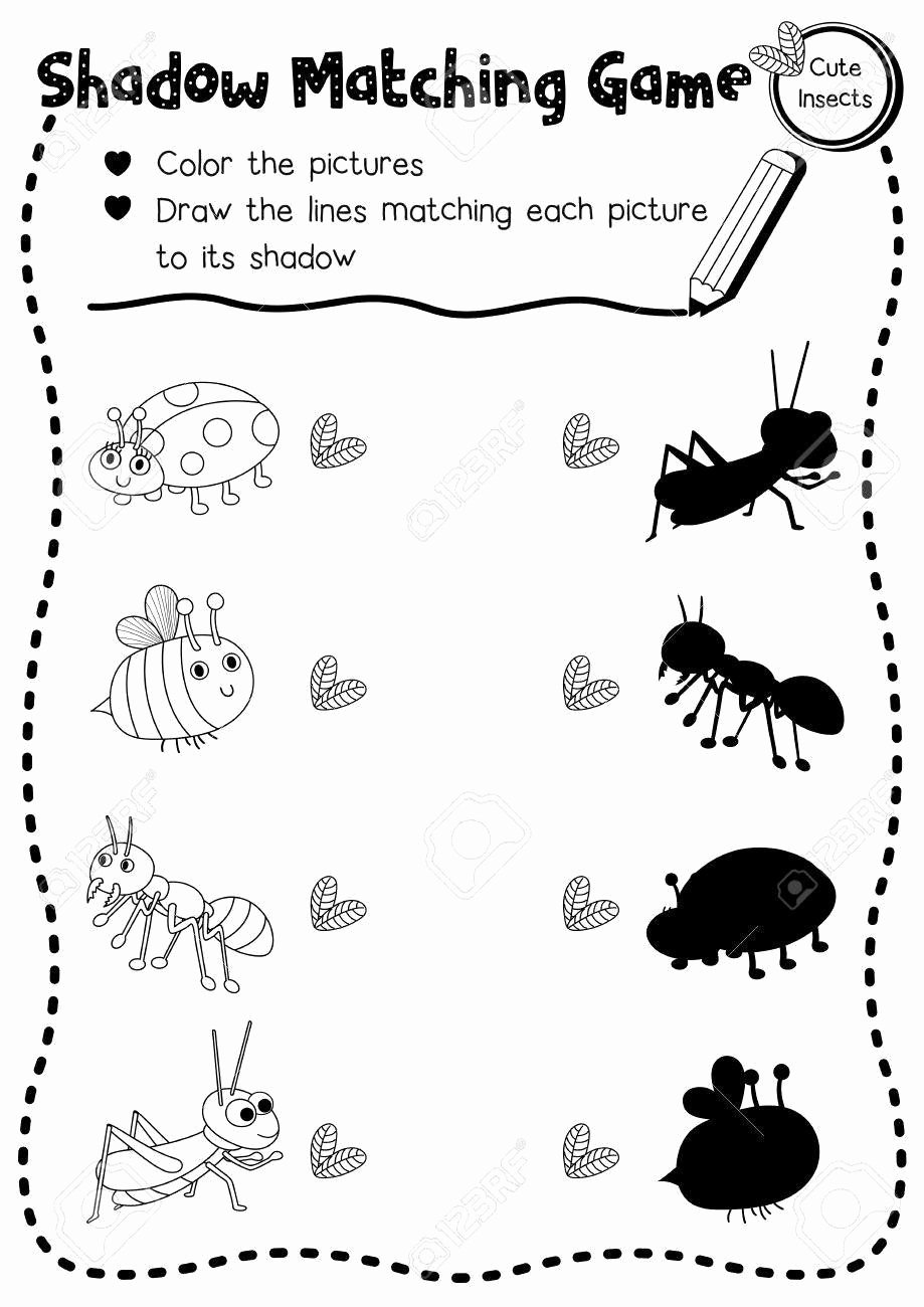 Insects Worksheets for Preschoolers Ideas Insects Worksheets for Kindergarten Shadow Matching Game