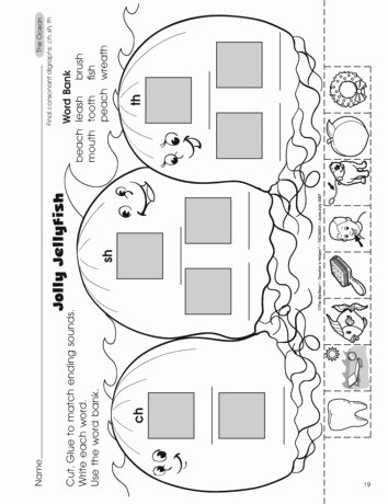 Jellyfish Worksheets for Preschoolers Best Of Teacher Ideas & Activities Jellyfish