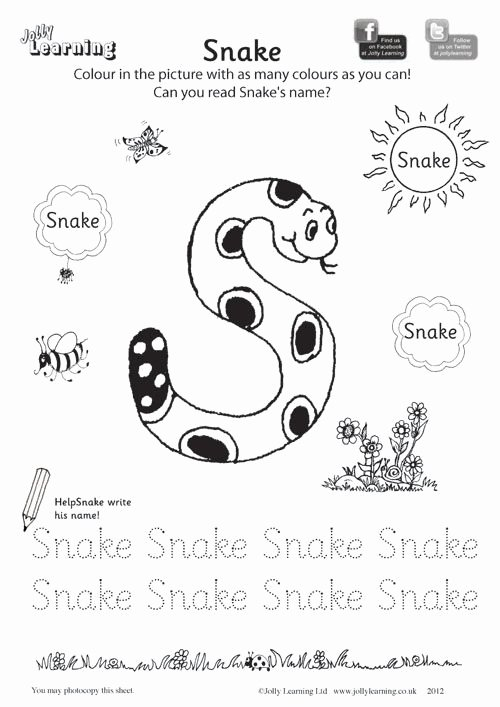 Jolly Phonics Worksheets for Preschoolers New Snake Colouring Sheet 500—707