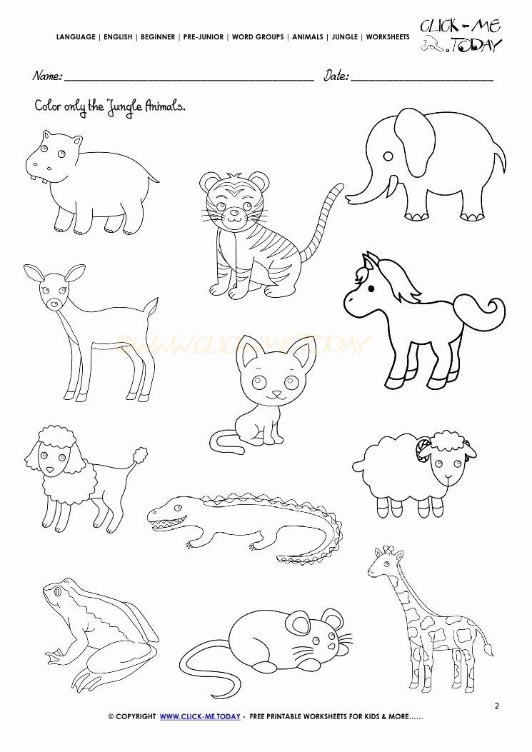 Jungle Animals Worksheets for Preschoolers Best Of Jungle Animals Printable Preschool Worksheets Jungle … – Prnt
