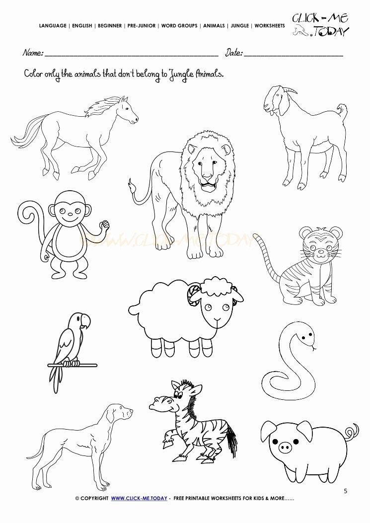 Jungle Animals Worksheets for Preschoolers Free Jungle Animals Worksheet Activity Sheet Color 5