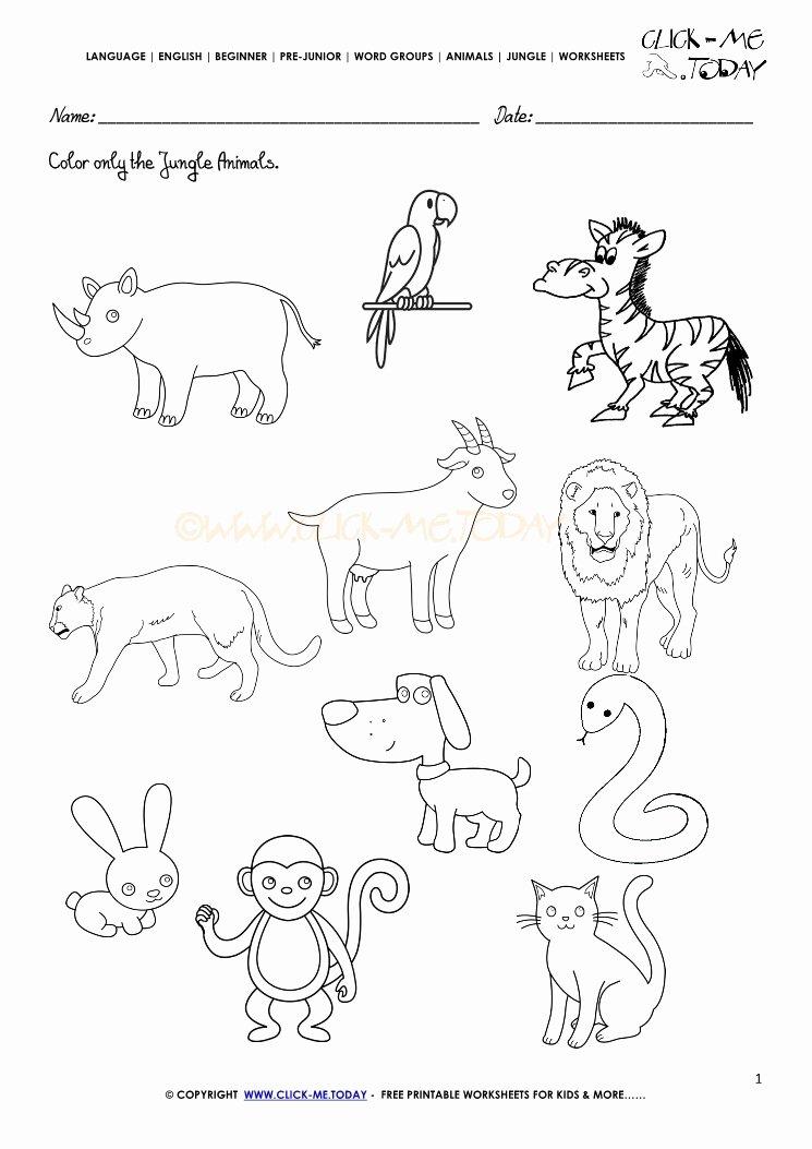 Jungle Animals Worksheets for Preschoolers Printable Jungle Animals Worksheet Activity Sheet Color 1