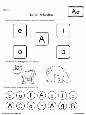 All About Letter A Worksheet