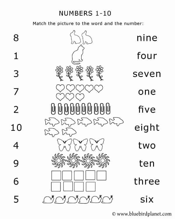 Matching Numbers Worksheets for Preschoolers Inspirational Free Printables for Kids