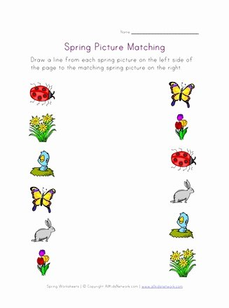 Matching Pictures Worksheets for Preschoolers New Spring Picture Matching Worksheet