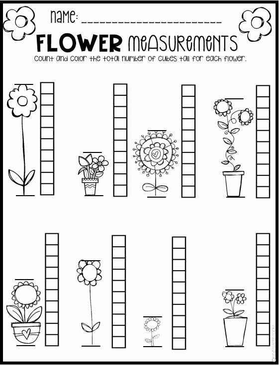 Measuring Worksheets for Preschoolers New Spring Math and Literacy Worksheets for Preschool is A No