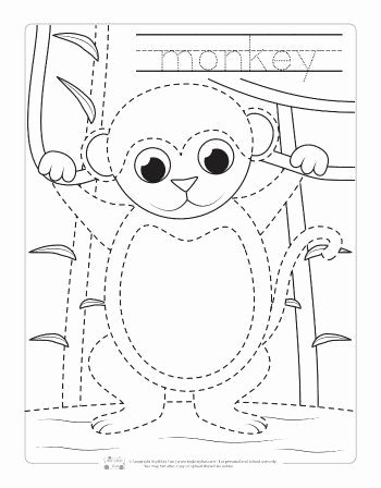 Monkey Worksheets for Preschoolers Fresh Safari and Jungle Animals Tracing Worksheets Itsybitsyfun