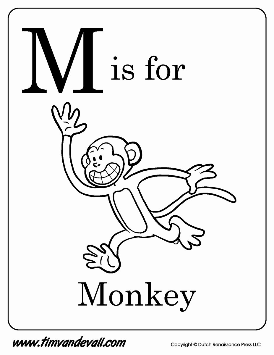 Monkey Worksheets for Preschoolers top M is for Monkey Printable Tim S Printables