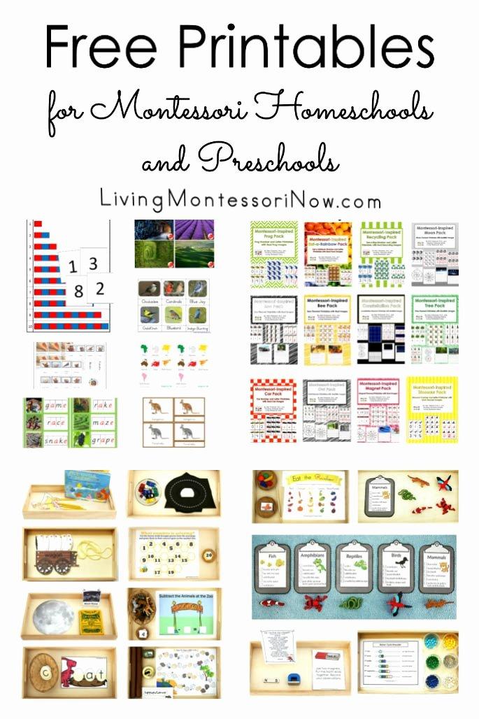 Montessori Worksheets for Preschoolers Fresh Free Printables for Montessori Homeschools and Preschools