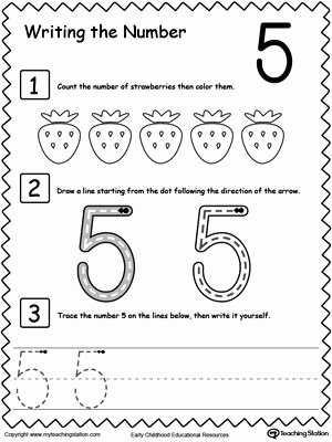 Number 5 Worksheets for Preschoolers Free Learn to Count and Write Number 5