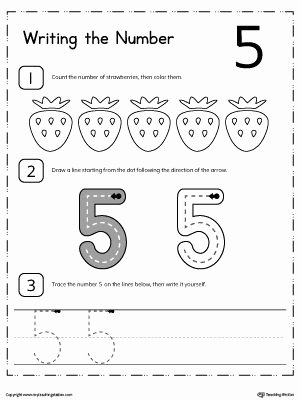 Number 5 Worksheets for Preschoolers Printable Learn to Count and Write Number 5