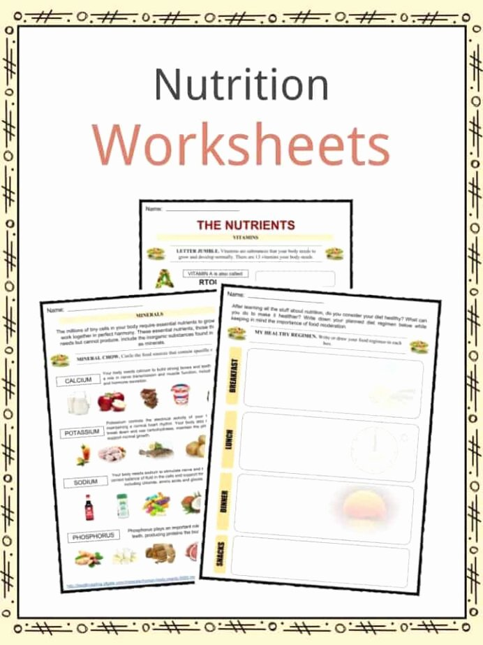 Nutrition Worksheets for Preschoolers Fresh Nutrition Facts Worksheets Information for Kids Free