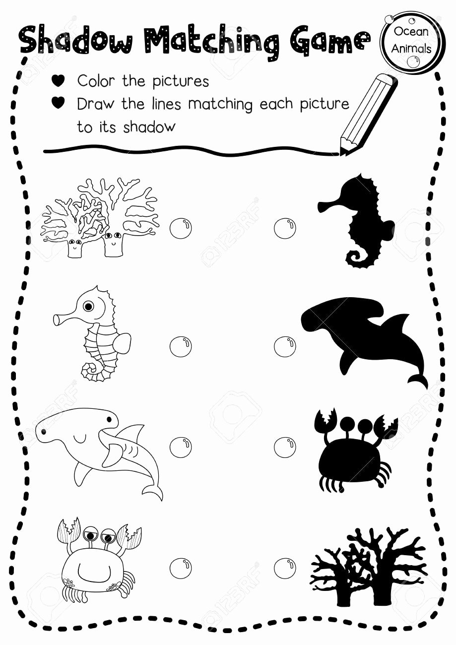 Ocean Animals Worksheets for Preschoolers New Shadow Matching Game Of Ocean Animals for Preschool Kids Activity