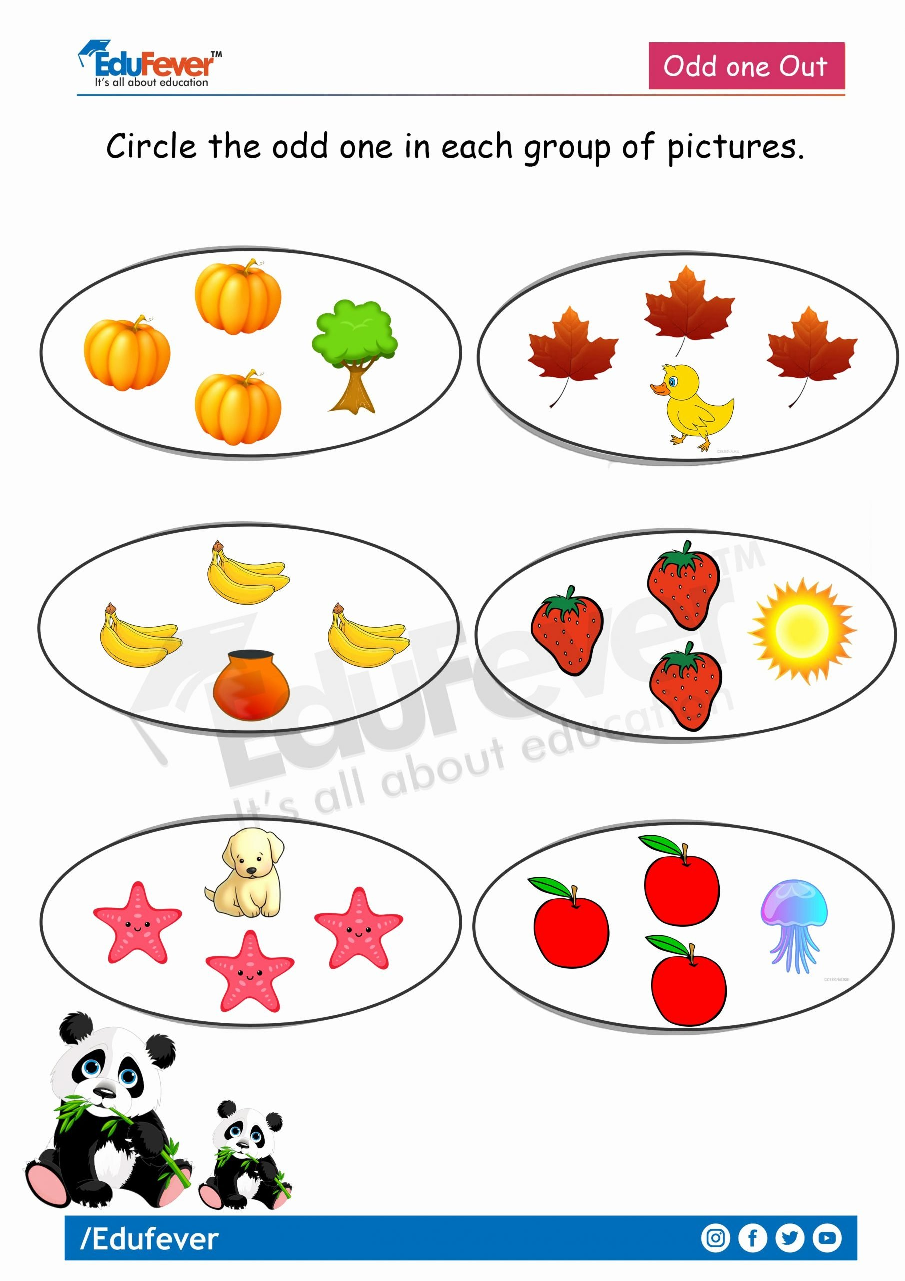 Odd One Out Worksheets for Preschoolers Lovely Circle the Odd One Out Lkg Math Worksheet In 2020