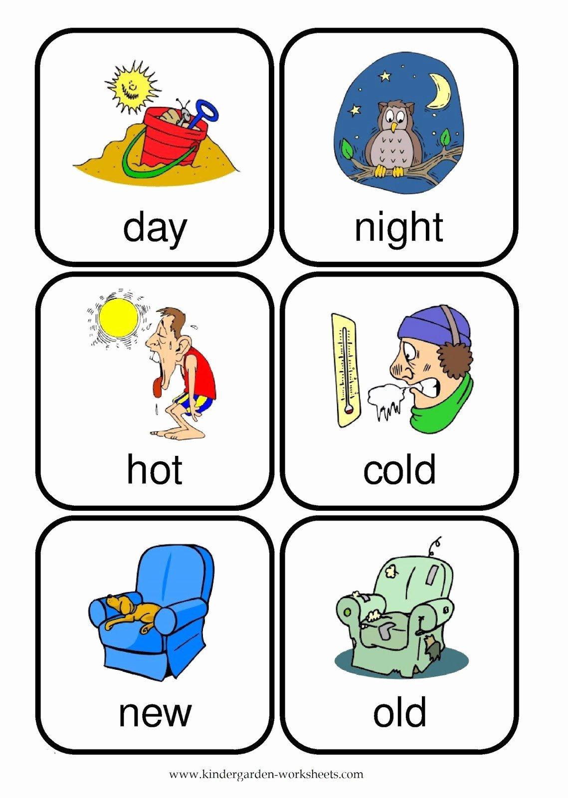 Opposite Worksheets for Preschoolers Printable Opposites Worksheet for Kindergarten Opposite Words