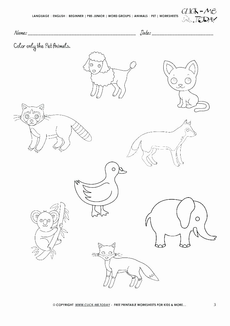 Pet Animals Worksheets for Preschoolers Best Of Zoo Worksheets Kindergarten – Keepyourheadup