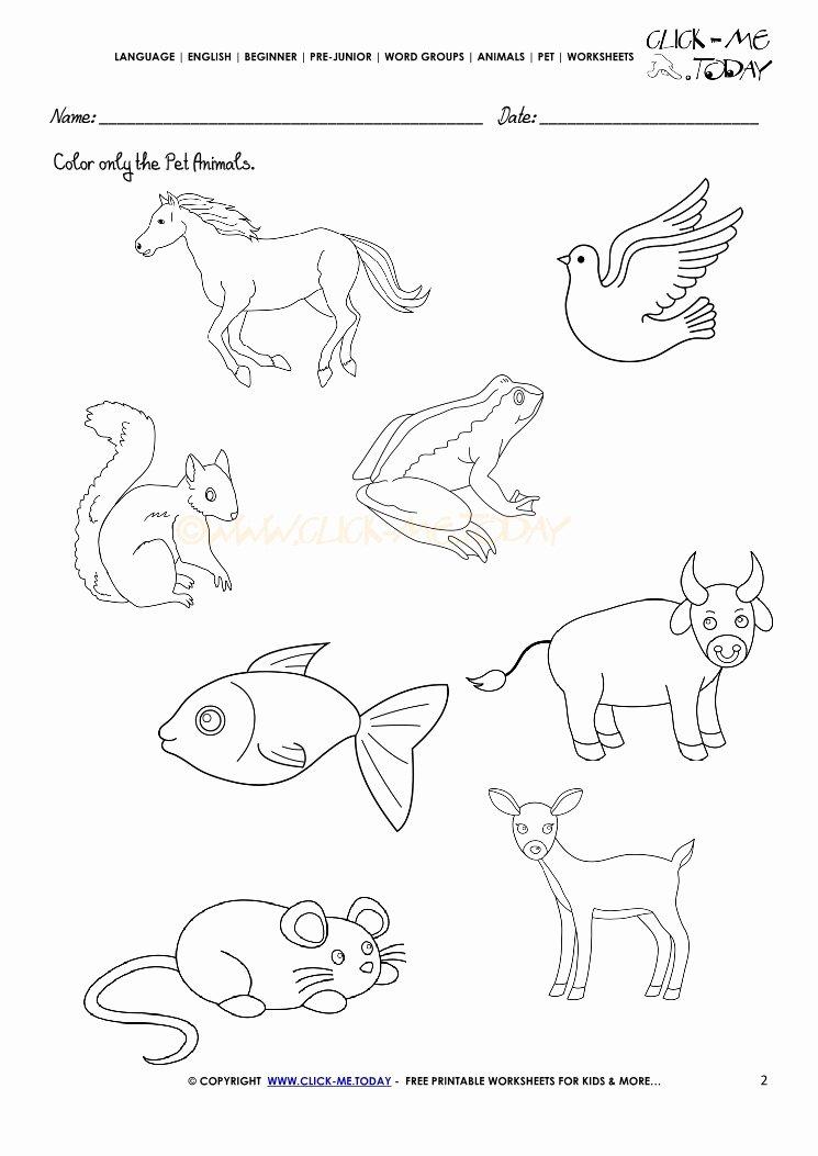 Pet Animals Worksheets for Preschoolers Kids Pet Animals Worksheet Activity Sheet 2