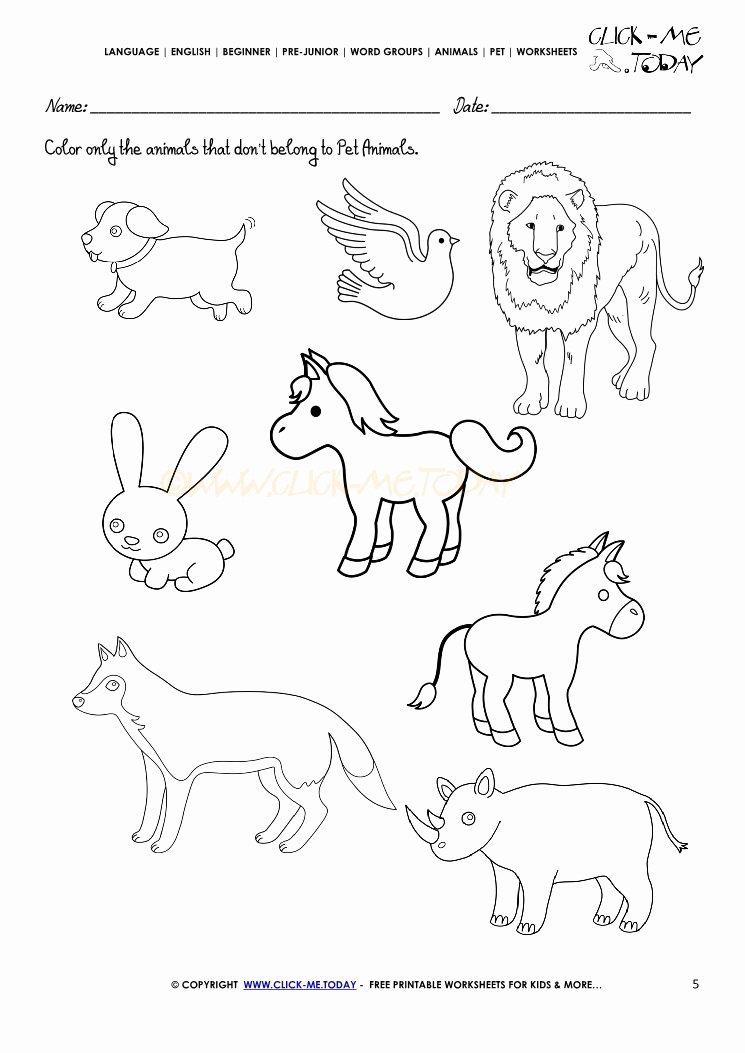 Pet Animals Worksheets for Preschoolers Printable Pet Animals Worksheet Activity Sheet 5