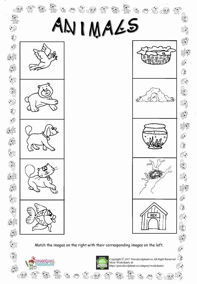 Pet Worksheets for Preschoolers Kids Math In the Workplace Worksheets Kindergarten Science