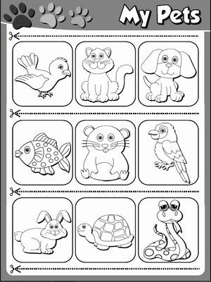 Pet Worksheets for Preschoolers New Funtastic English 1 1st Graders