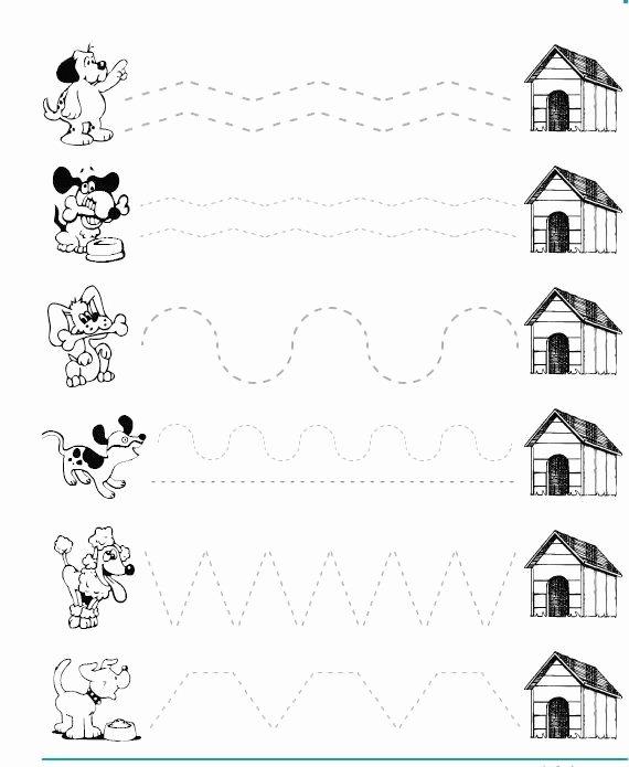 Pet Worksheets for Preschoolers top Dog Trace Worksheet