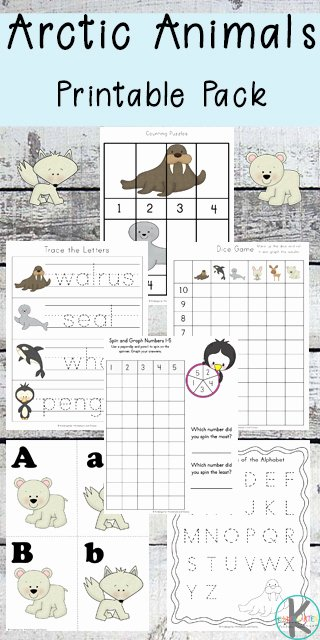 Polar Animal Worksheets for Preschoolers Free Free Arctic Animals Worksheets