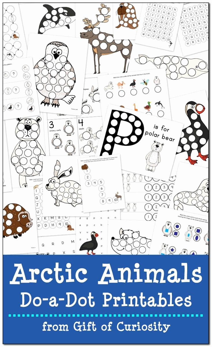 Polar Animal Worksheets for Preschoolers Ideas Arctic Animals Do A Dot Printables Free