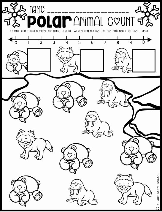 Polar Animal Worksheets for Preschoolers Ideas Polar Animal Math and Literacy Worksheets for Preschool