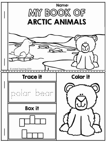 Polar Animal Worksheets for Preschoolers Lovely My Book Of Arctic Animals Part Of the Polar Animals No