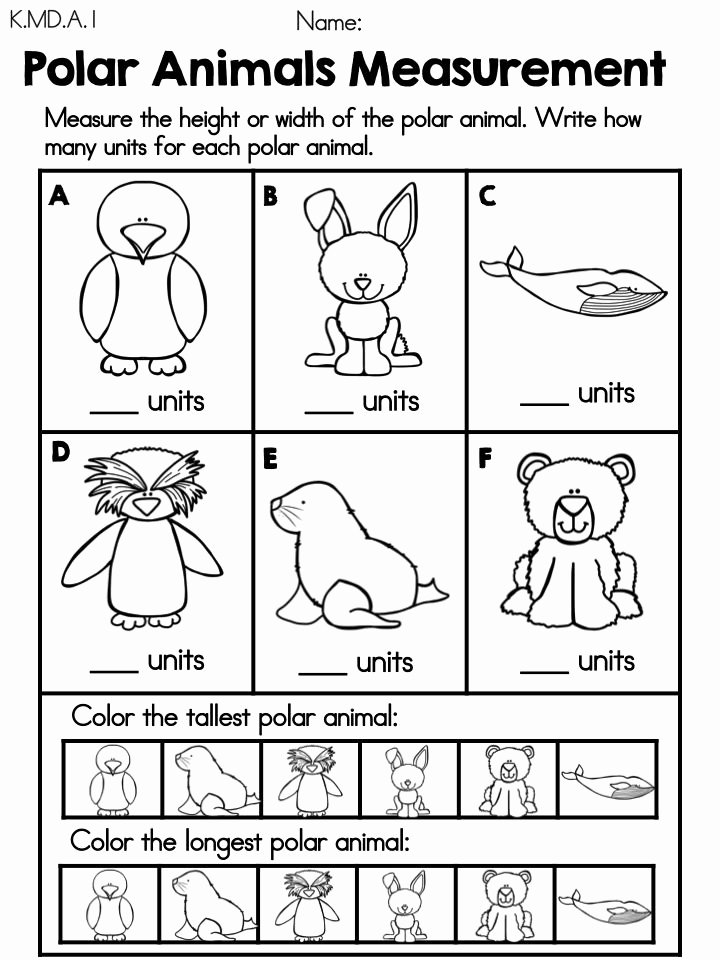 Polar Animal Worksheets for Preschoolers New Measurement Polar Animals Free Math Center