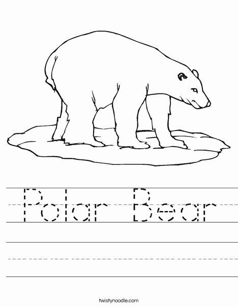 Polar Animal Worksheets for Preschoolers New Polar Bear Worksheet