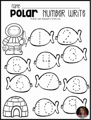 Polar Animal Worksheets for Preschoolers Printable 100 Best Arctic Animals Preschool Images In 2020