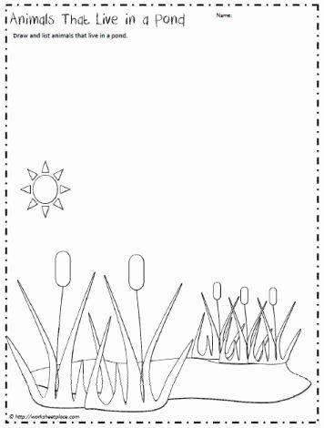 Pond Life Worksheets for Preschoolers Free Pond Animals Worksheetworksheets
