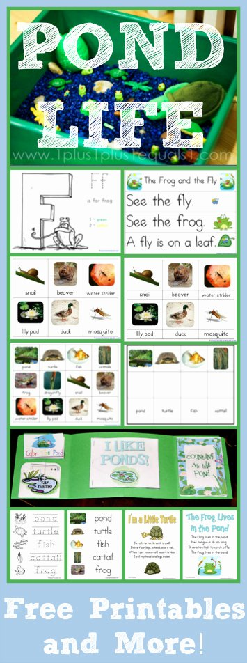 Pond Life Worksheets for Preschoolers Free Pond theme Printables and More 1 1 1=1