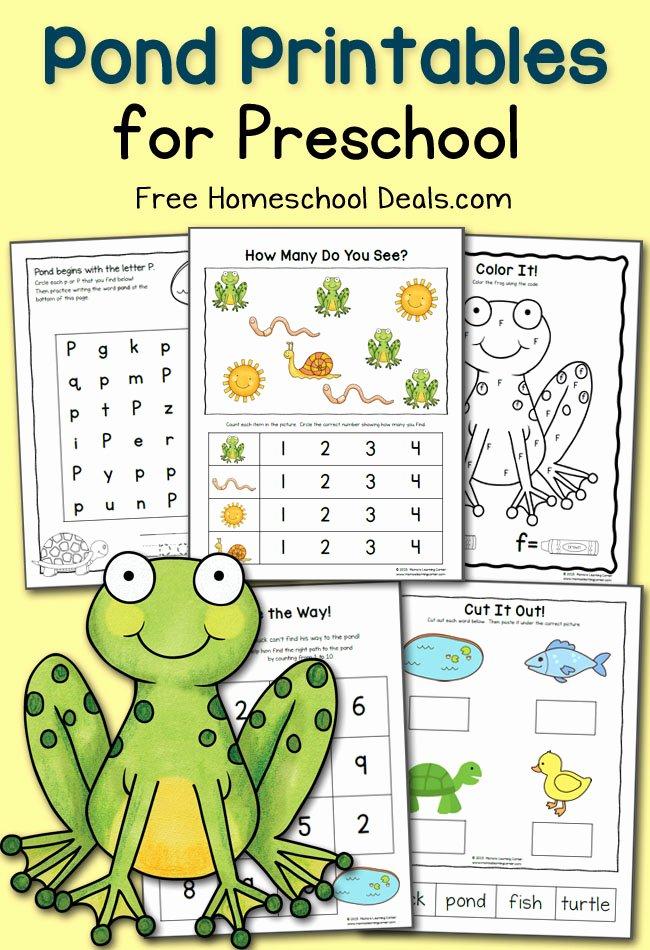 Pond Life Worksheets for Preschoolers Inspirational Free Preschool Pond Printables Instant