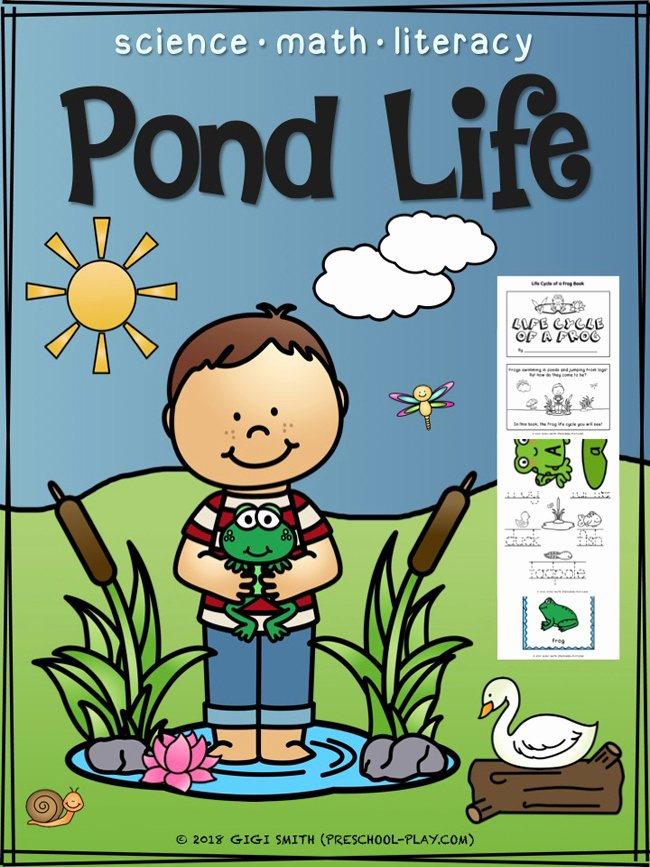 Pond Life Worksheets for Preschoolers Kids Pond Life Science Math and Literacy Activities