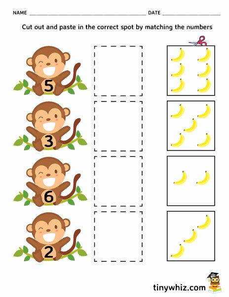Pre K Printable Cutting Worksheets for Preschoolers Printable Worksheet Match Numbers and Cut Out Worksheet Free