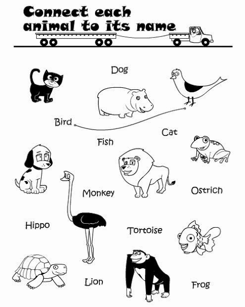 Printable Animal Worksheets for Preschoolers Lovely Kids Page Printable Connect Wild Animals Name Worksheet