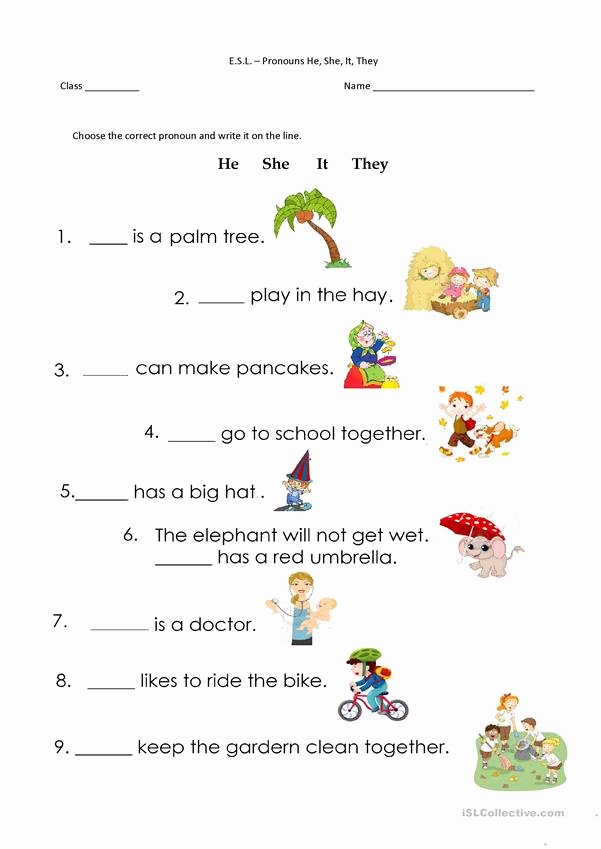 Pronoun Worksheets for Preschoolers Inspirational Pronouns He She It they English Esl Worksheets for