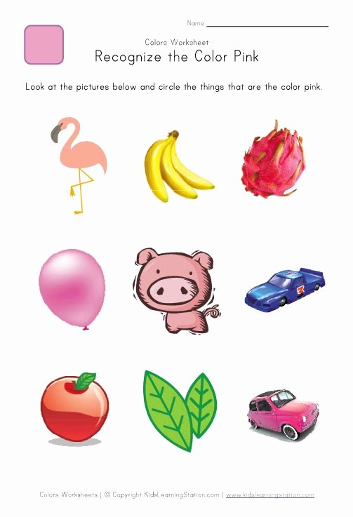 Recognition Colors Worksheets for Preschoolers Ideas Recognize the Color Pink Colors Worksheet for Kids