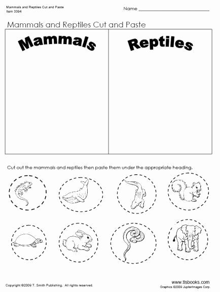 Reptile Worksheets for Preschoolers Inspirational Pin On Kids Science