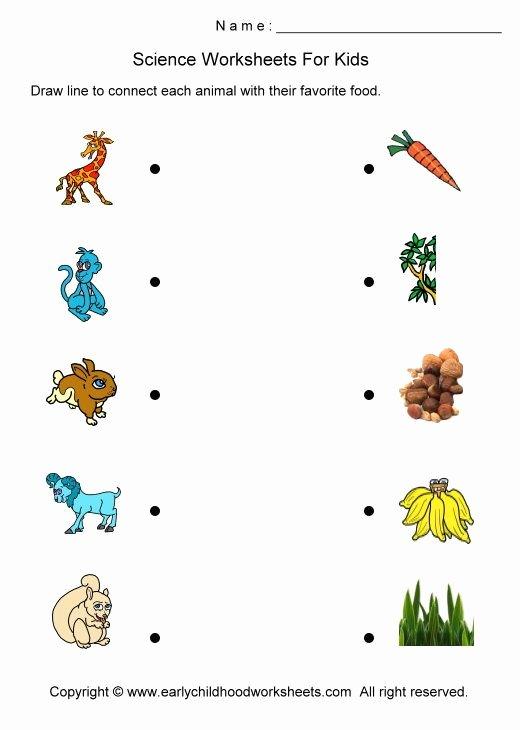 Science Worksheets for Preschoolers Fresh Science Worksheets for Kindergarten Printable Square Grid