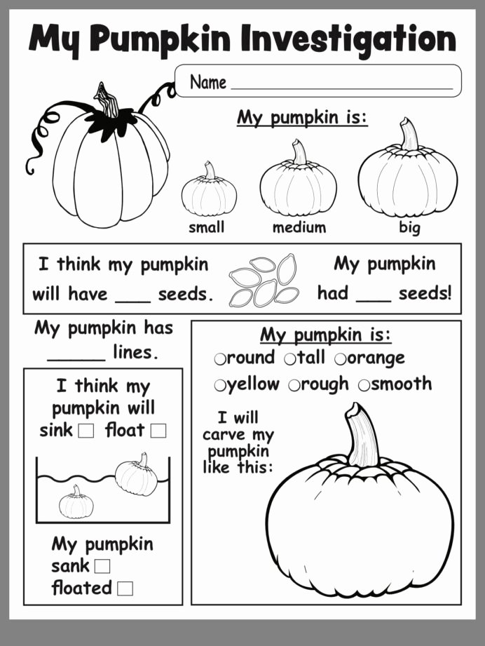 Science Worksheets for Preschoolers Ideas Pumpkin Investigation Kindergarten Science Lessons