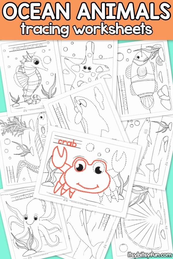 Sea Animals Worksheets for Preschoolers Kids Ocean Animals Tracing Worksheets Itsybitsyfun