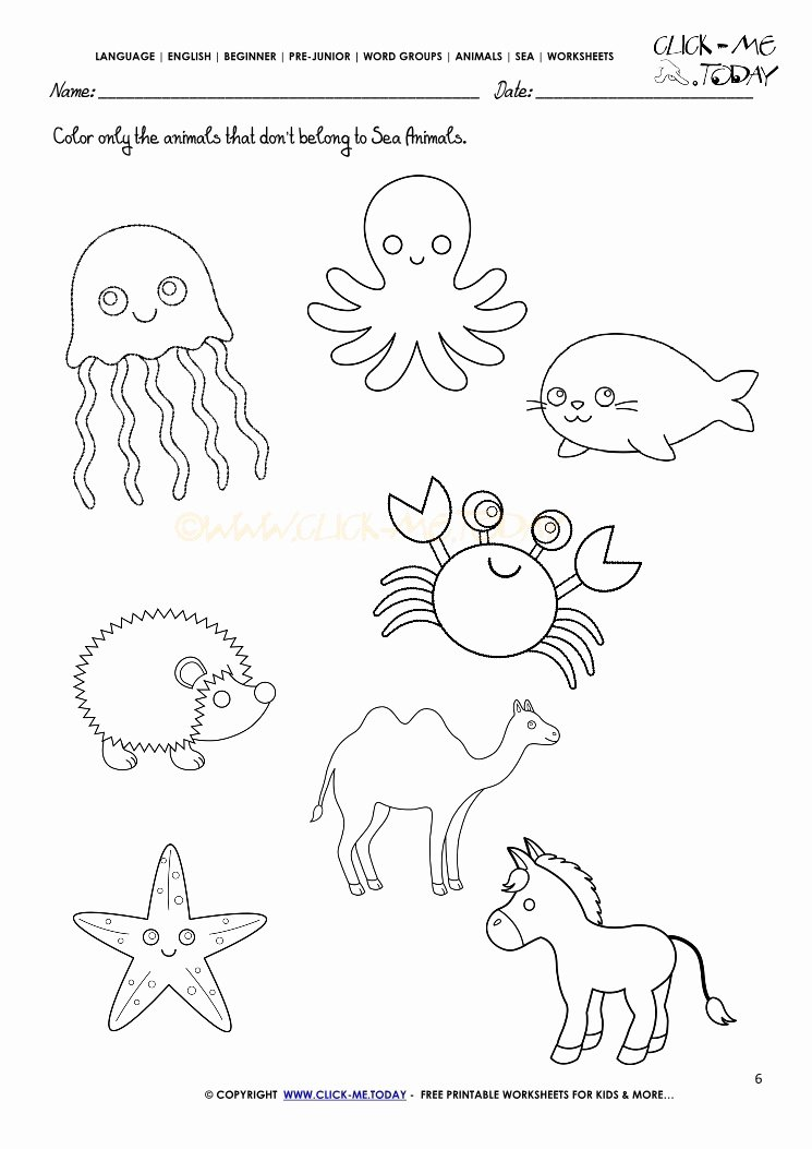 Sea Animals Worksheets for Preschoolers top Worksheet Worksheet Under the Sea Activities for