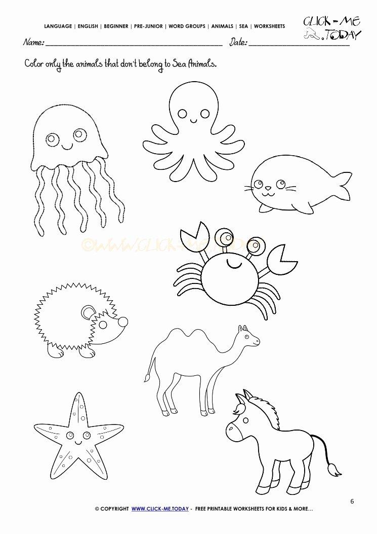 Sea Creatures Worksheets for Preschoolers Ideas Worksheet Worksheet Under the Sea Activities for