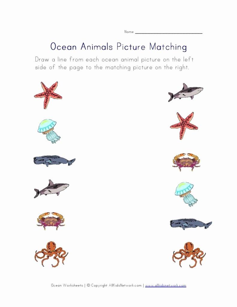 Sea Creatures Worksheets for Preschoolers Kids Activities and Worksheets for Preschoolers Pacific Beach