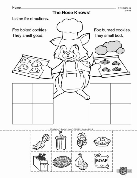 Sense Of Smell Worksheets for Preschoolers Inspirational the Mailbox
