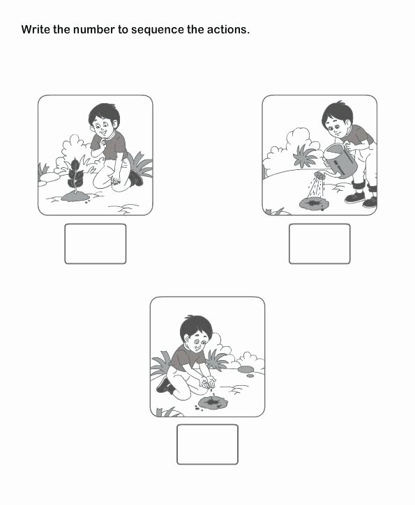 Sequencing Worksheets for Preschoolers Printable Worksheet Worksheet Sequencing Worksheets for Preschool