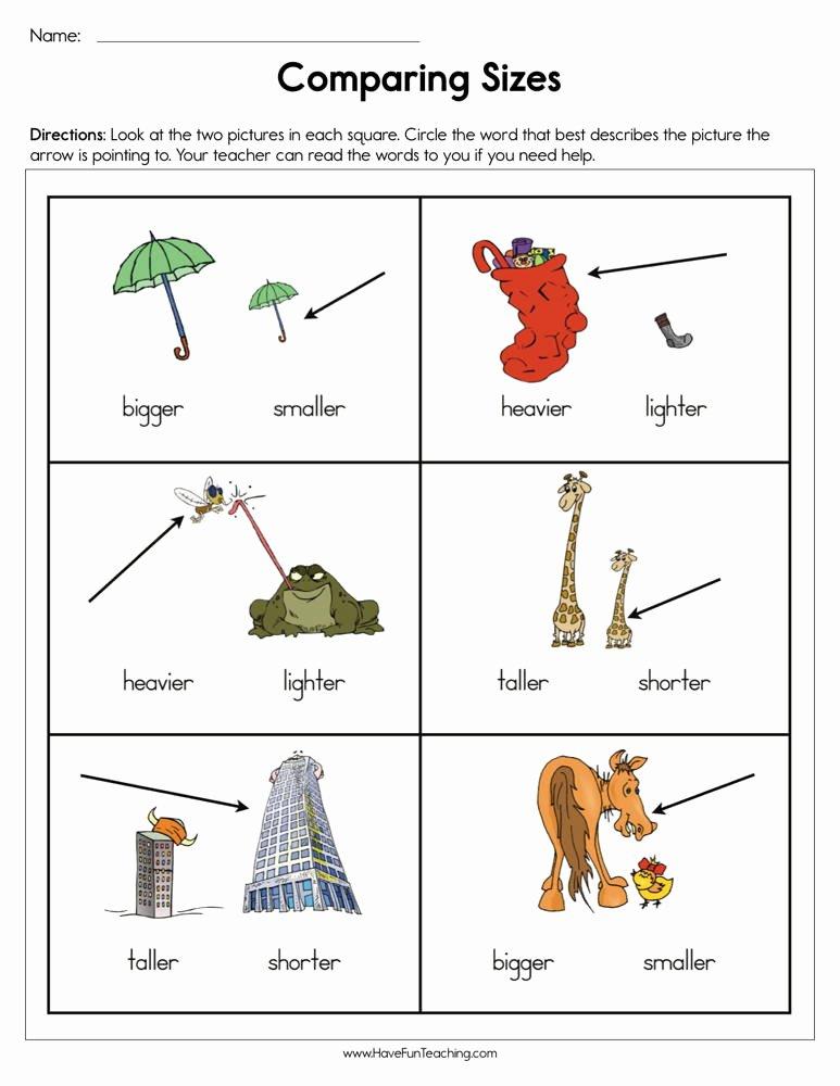 Size Comparison Worksheets for Preschoolers Ideas Paring Sizes Worksheet